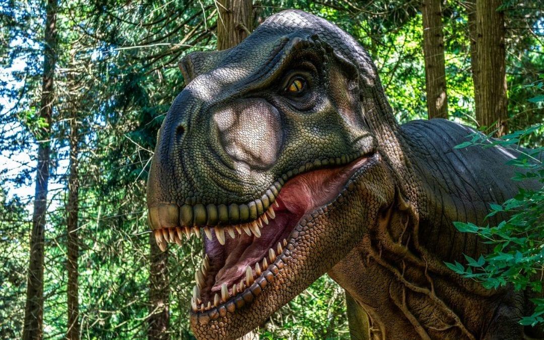 Dinoer fra Knuthenborg safaripark